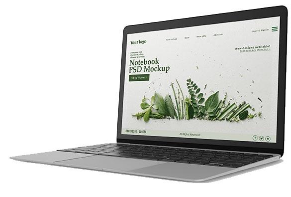 Product 1 Laptop