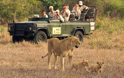 3-Day Safari to Etosha National Park, Namibia Namibia